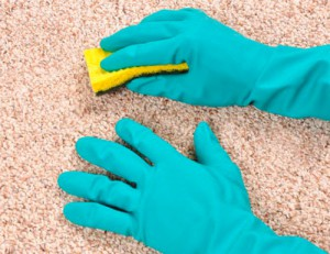 Carpet and Upholstery Cleaning in London Muswell Hill N10